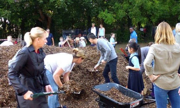 Woodland Learning Adventure at Upton