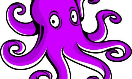 Introducing the Purple Octopus Project CIC.