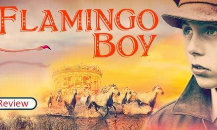 Young Reporter, Joshua, reviews 'Flamingo Boy' by Michael Morpurgo as he continues his charity reading challenge