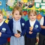 Ramsgate Arts Primary's Eggs-cellent Lessons About Growth and Life Cycle