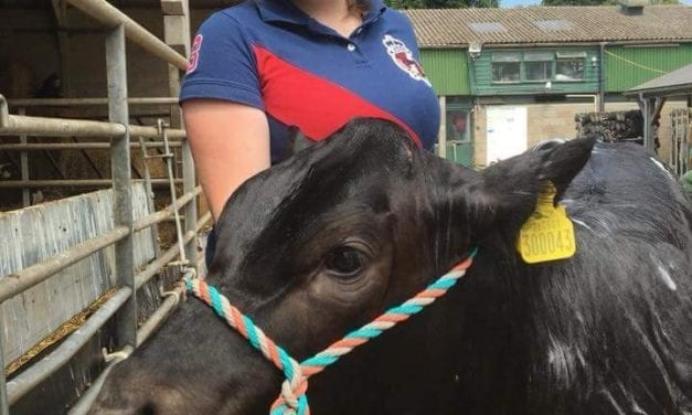 KENT STUDENTS TO RECEIVE SCHOLARSHIP FUNDING FOR AGRICULTURAL STUDIES AT UNIVERSITY