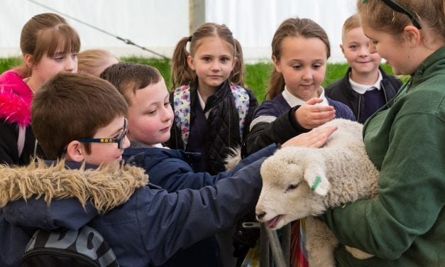 Living Land Teaches 2650 School Children About Food and Farming