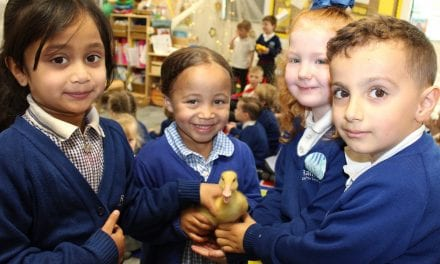 Children Welcome Fluffy Ducklings Into The World