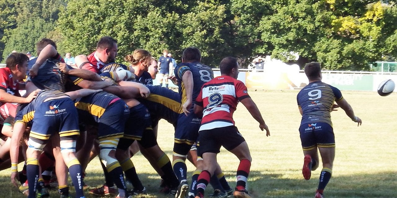 MAIDSTONE RUGBY 15  38 THANET WANDERERS RUFC