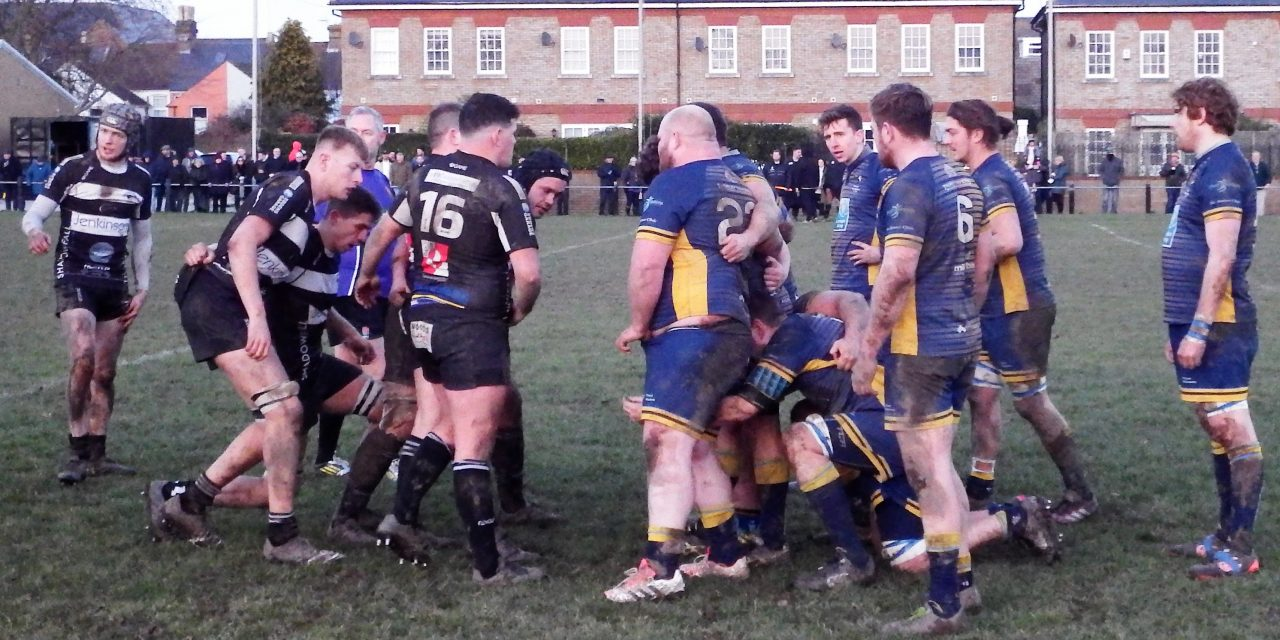 DEAL & BETTESHANGER LIONS 26 – 20 THANET WANDERERS RUFC