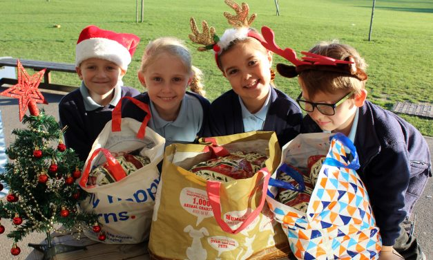 A Bright Star of Hope for the Homeless at Christmas